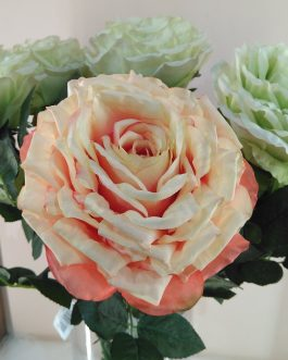 Rosa melocotón/verde