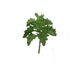 Planta artificial Crasalucea