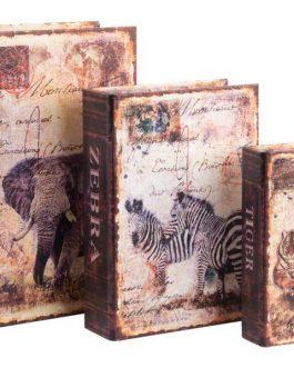 Set caja libro lienzo/madera selva