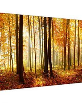 Lienzo bosque 180×60 cm.