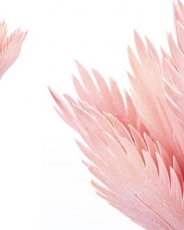 Flor foam rosa 55x53x111 cm.
