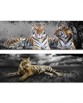 Cuadro lienzo tigre 135×45 cm.