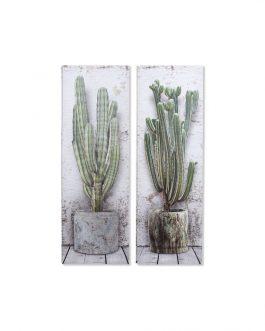Cuadro lienzo cactus 45×135 cm.