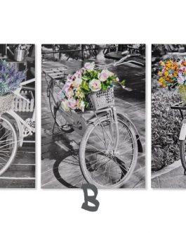 Lienzo bicicletas 50×2,5×70 cm
