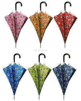 Paraguas automático estampado margaritas en 6 colores