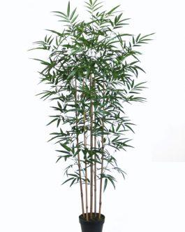 Planta PVC bambú 75x70x155 cm