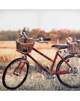 Lienzo bicicleta con relieve 90x3x60 cm