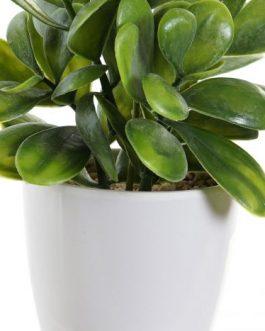 Planta artificial en maceta 13x11x17,5 cm